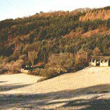 Mansion fields and Coed Hafod
